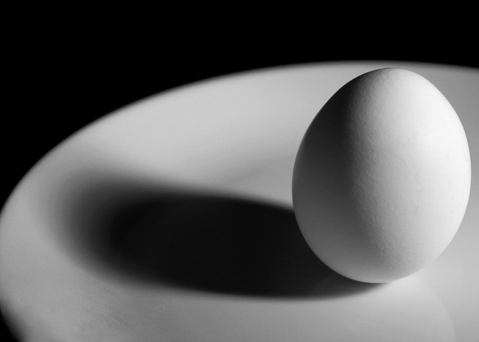 1) An egg