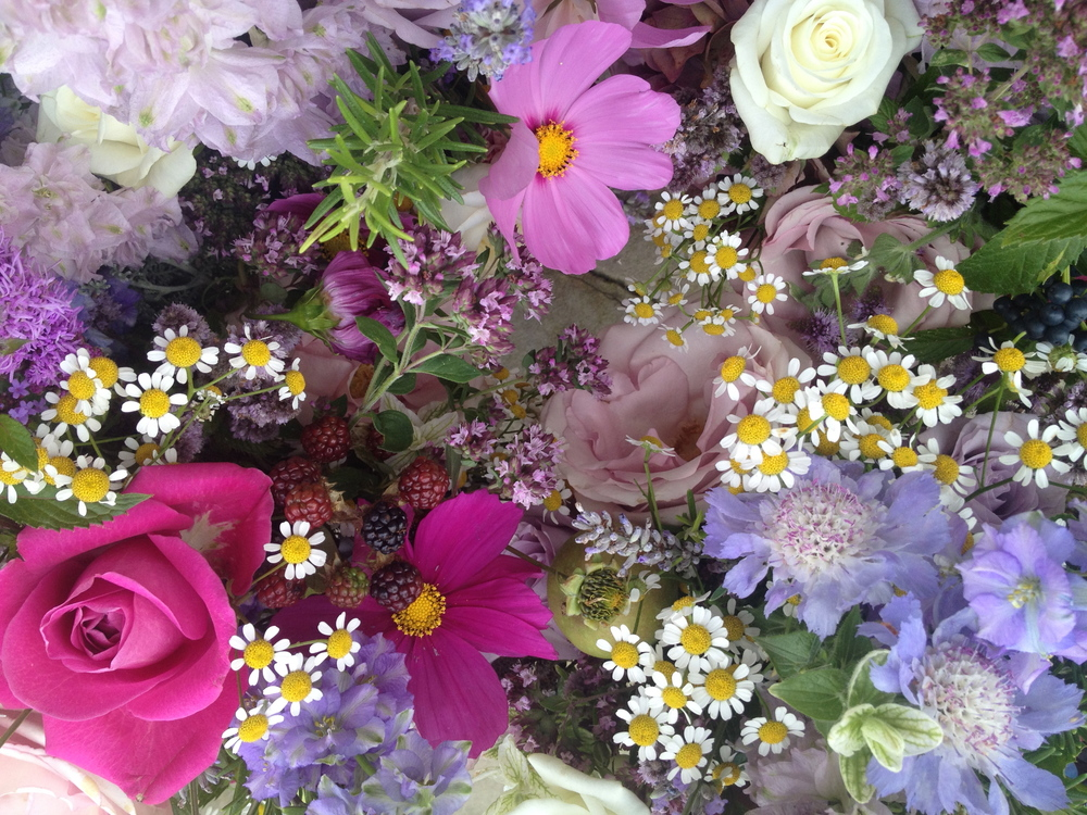 Rasberries, Cosmos,Feverfew daisies, Delphiniums, Lilac Scabious, Flowering Mint & Roses