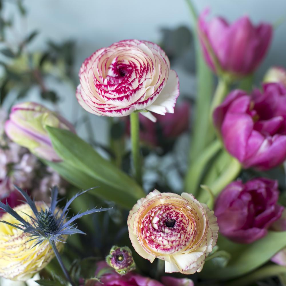 FlowersByBreige-HB-58.jpg