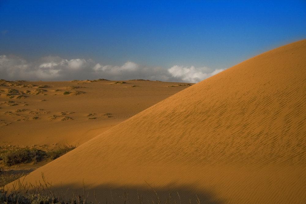 Lake Drive Dune at Morning
