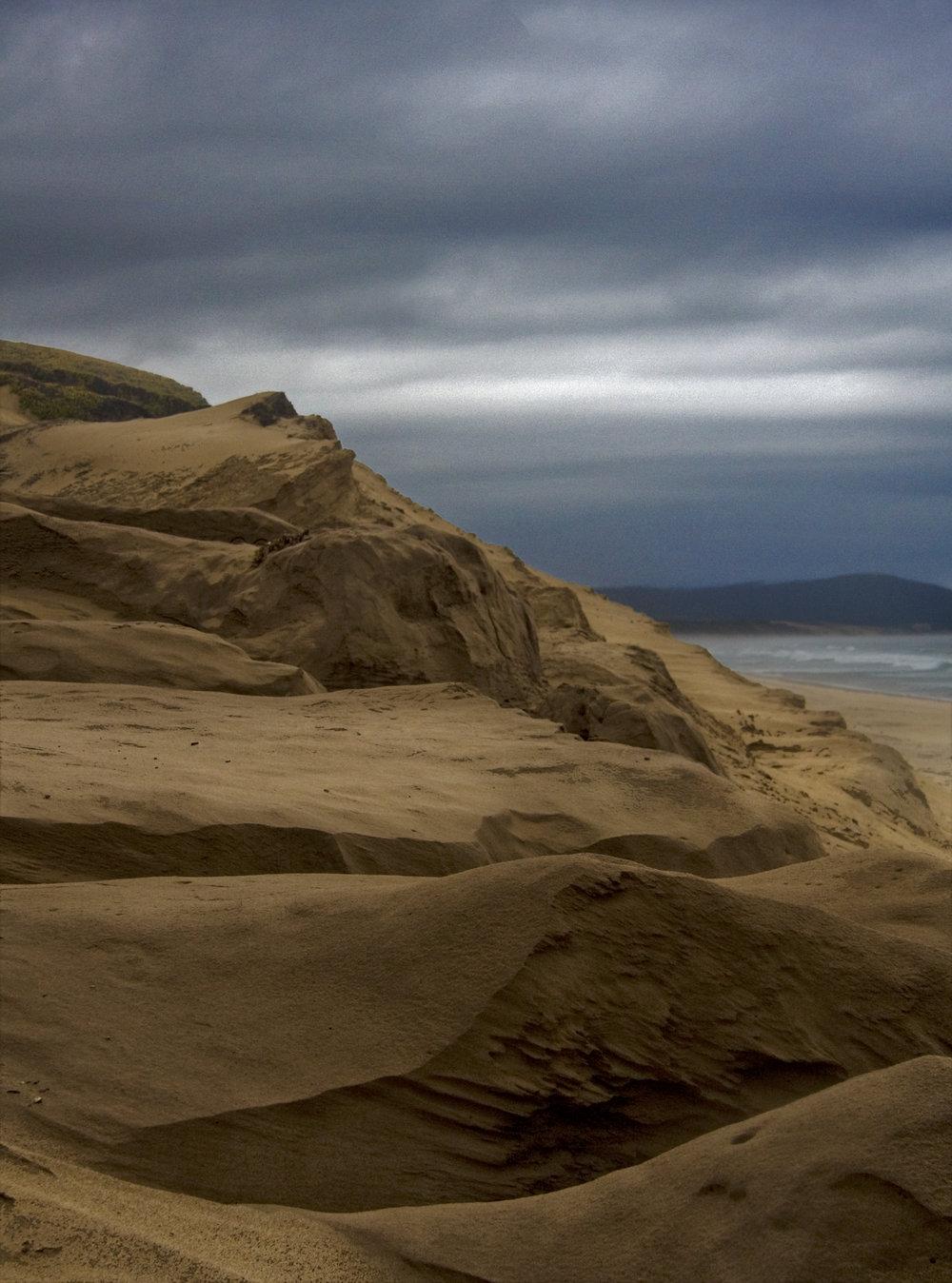 Marina Sand Forms