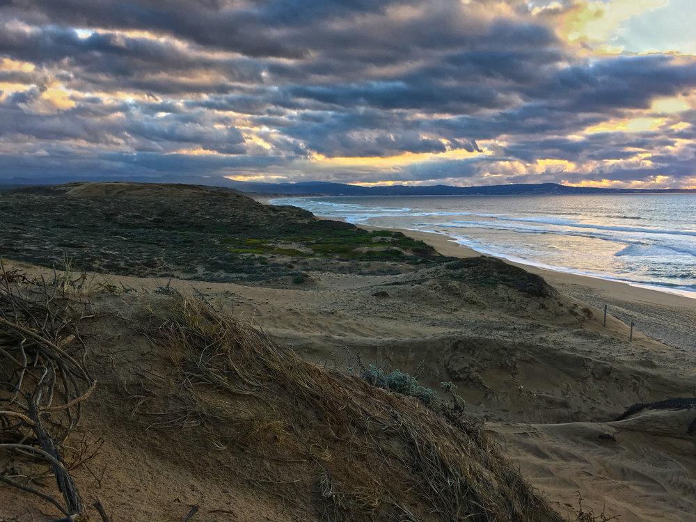 Marina Sunset III