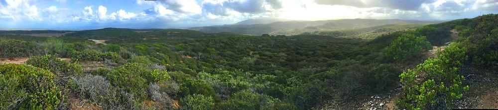 Panorama to Mt. Toro (Ft. Ord)