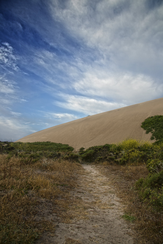 Dunes Drive Pathway