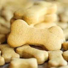 dogb.jpg