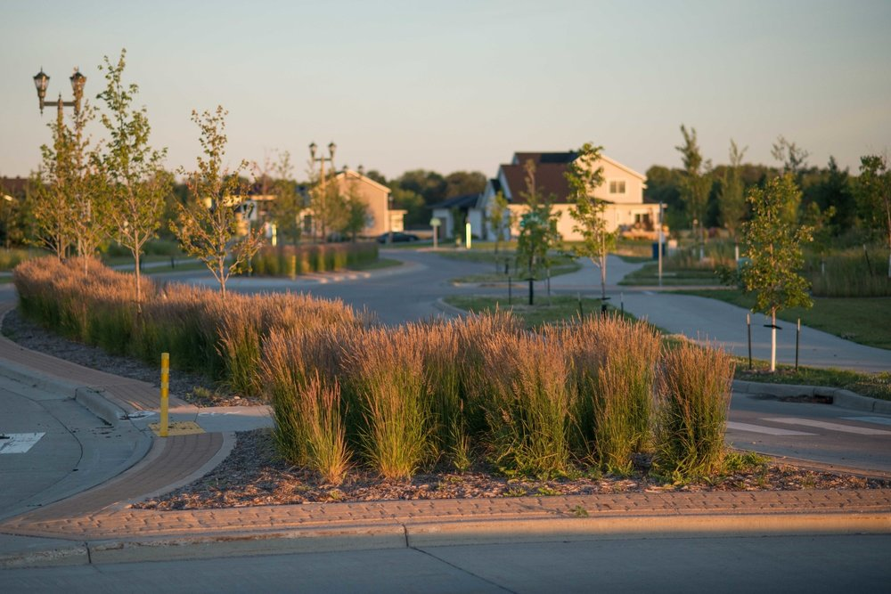 Land Elements designed the streetscapes and  property layouts for the entire development.