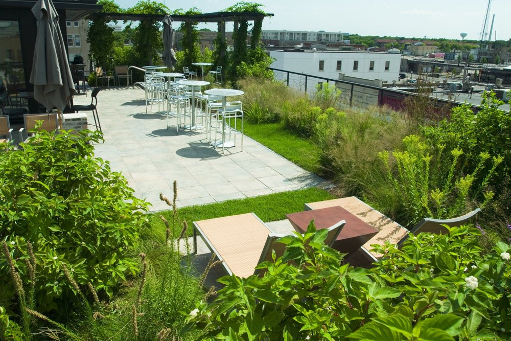 Urban, entertaining rooftop garden for guests of the Hotel Donaldson and HoDo Restaurant and Lounge.