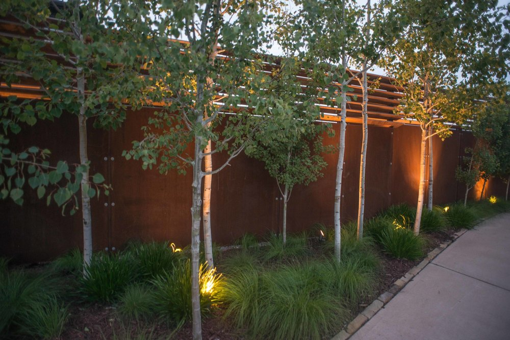 The corten steel screen wall and trees creates privacy for the suburban property.