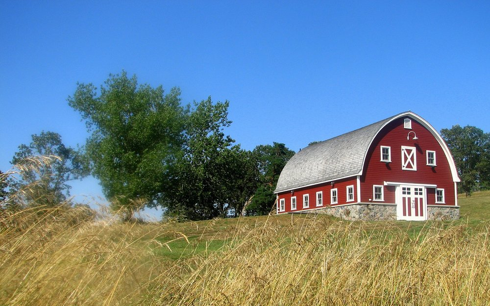 This masterplan encompassed everything on this property including the renovation of the existing old-century farm house and barn, recreational trails, and the development of wildlife and land management plans,