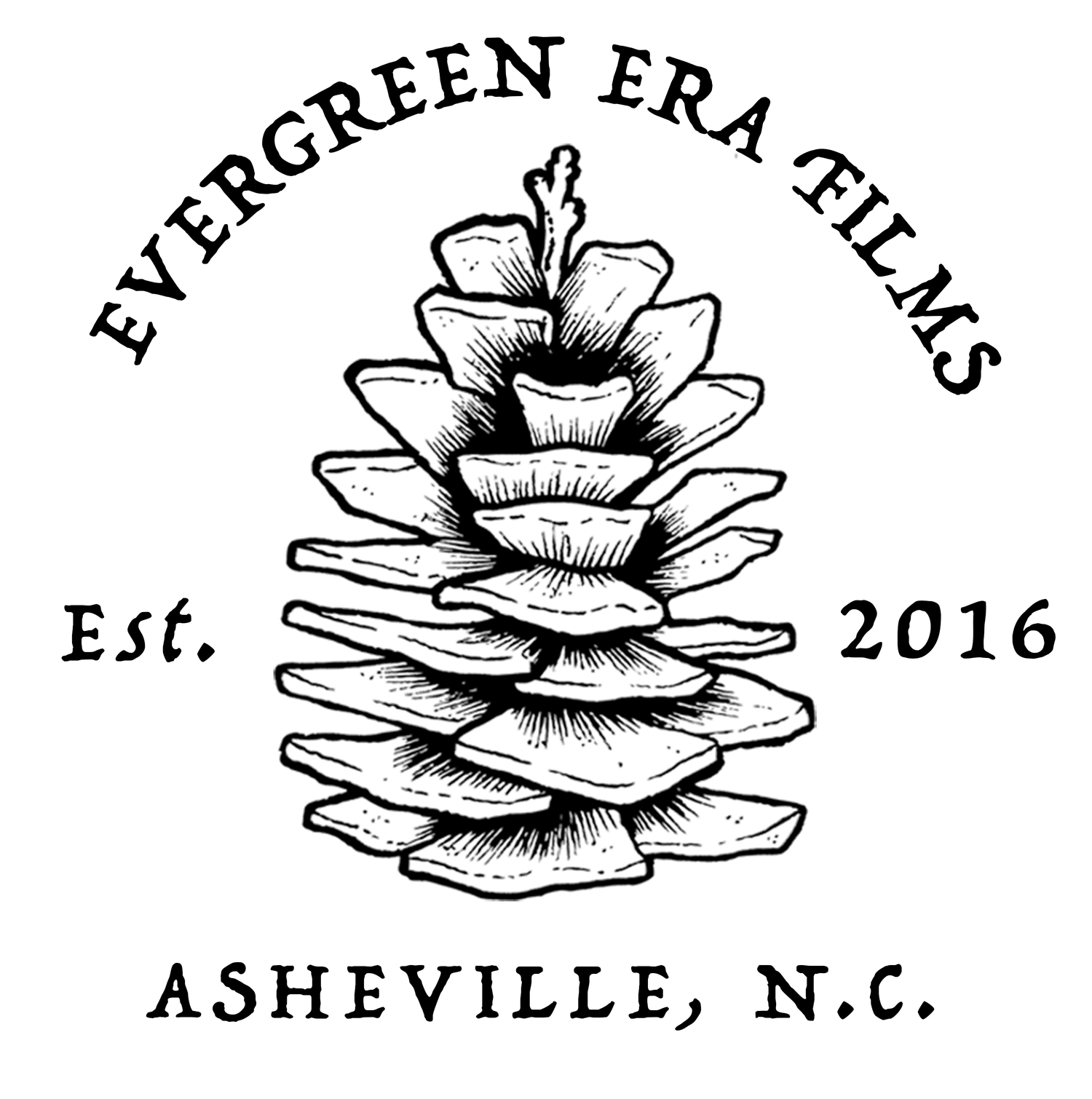 Asheville Wedding Videographer | Evergreen Era Films