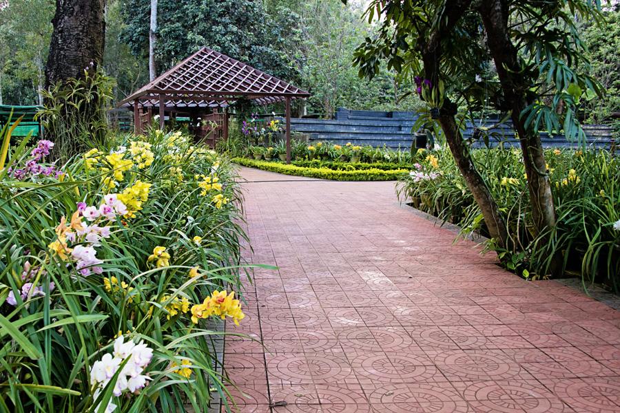National Kandawgyi Botanical Gardens in Pyin Oo Lwin Myanmar