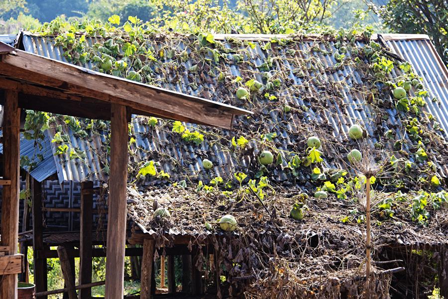 038-web-trekking-hsipaw-myanmar-kp-photography