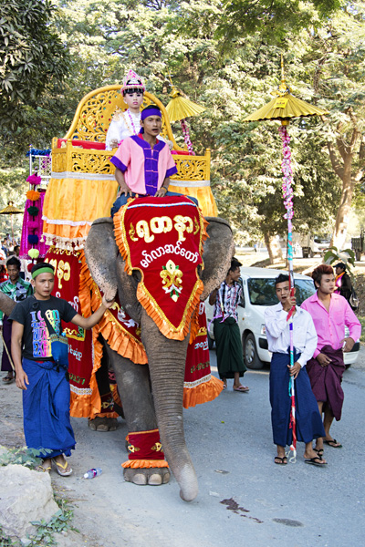 Young Burmese boy on an elephant in a Buddhist Shinbyu procession in Myanmar