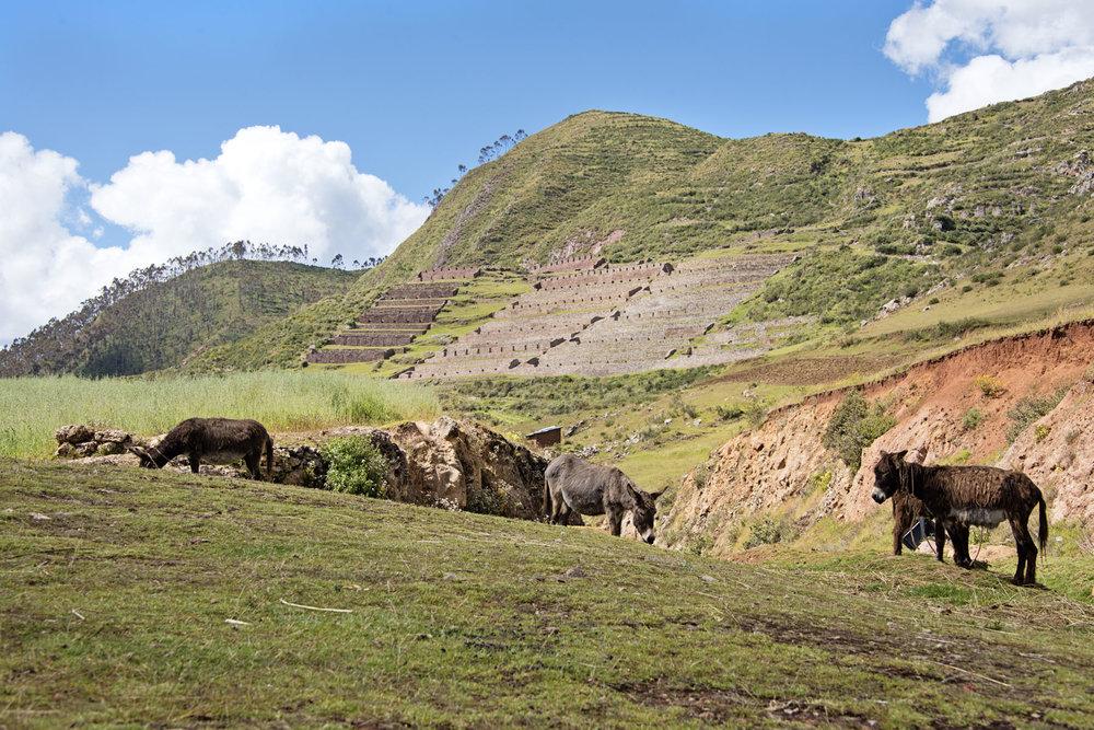 107-Peru-5-15.jpg