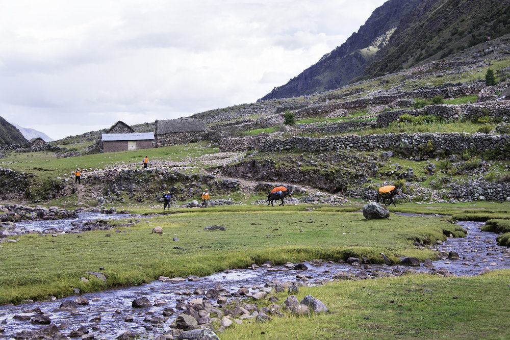 392-Peru-5-15_web.jpg