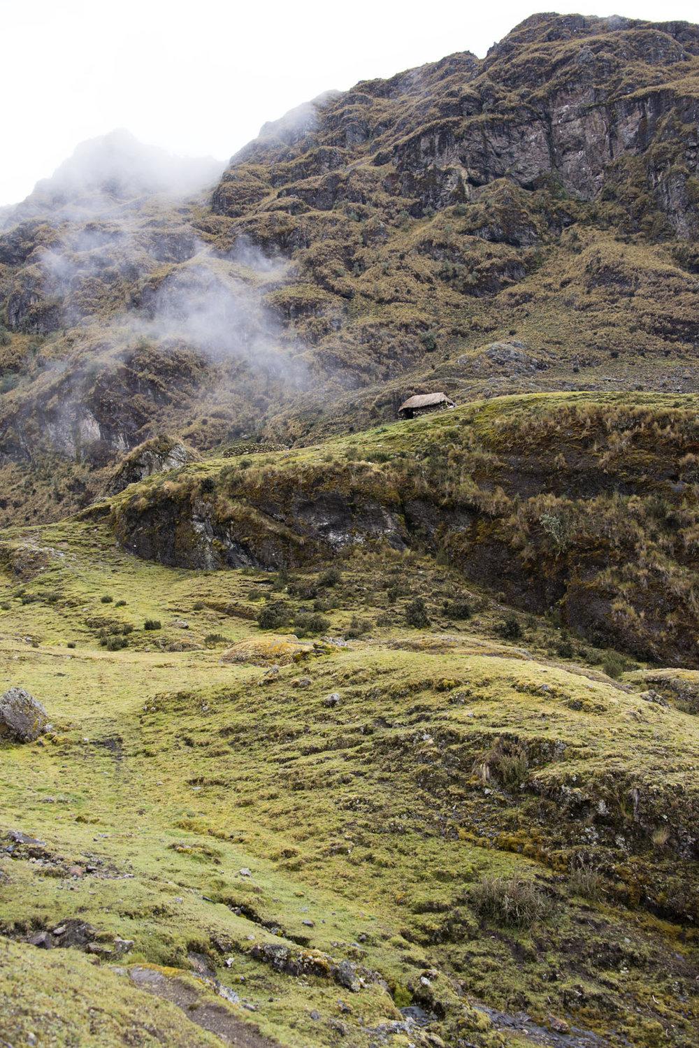 169-Peru-5-15_web_web.jpg