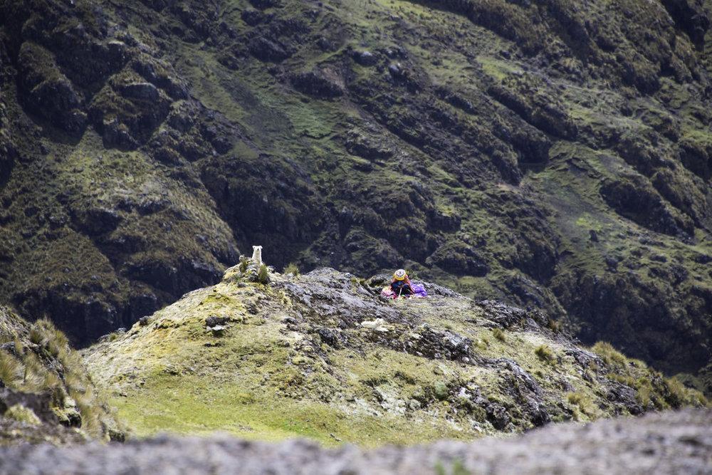 271-Peru-5-15_web.jpg
