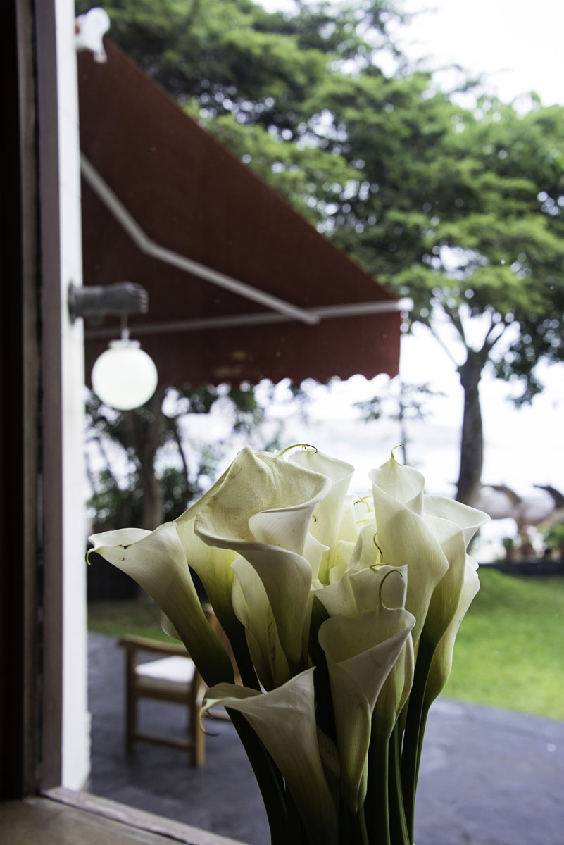 Cala Lilies in the Window at Lima Hotel Second Home Peru
