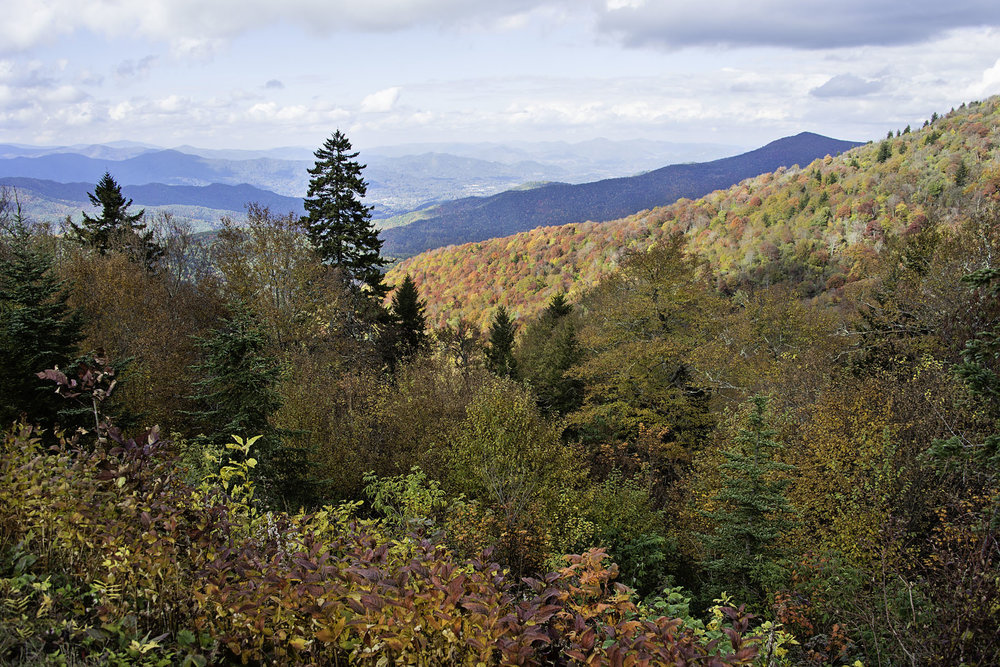 Fall Foliage Landscape in Smoky Mountains on Blue Ridge Parkway