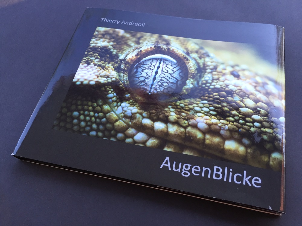 Buch AugenBlicke / Book
