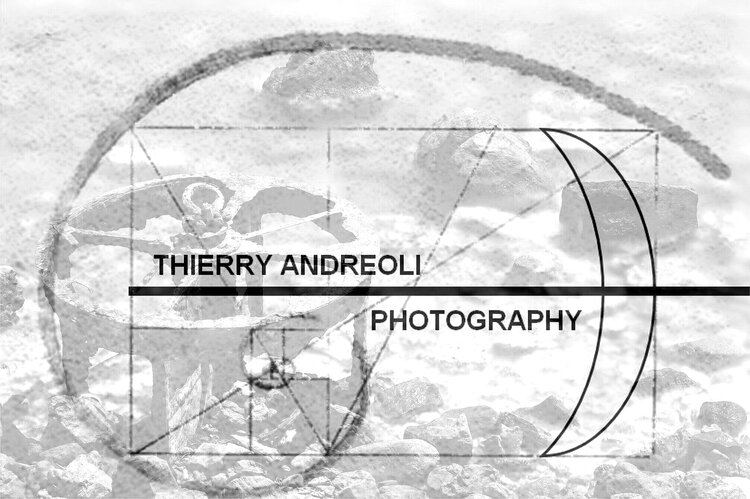 THIERRY ANDREOLI PHOTOGRAPHY