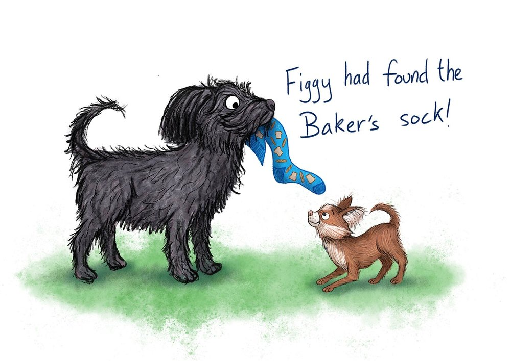 sspeight-figgy-pip-bakers-sock.jpg