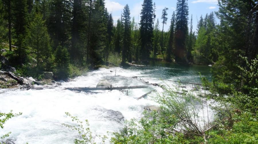 Rapids Grand Teton National Park