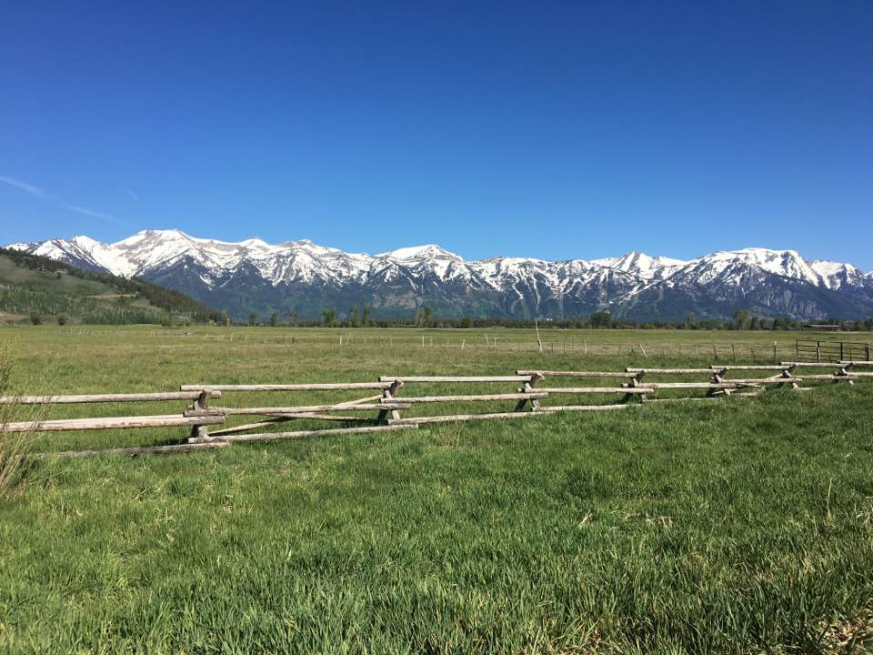 Grand Teton Half Marathon race course - photo courtesy of Delaney Van Vranken