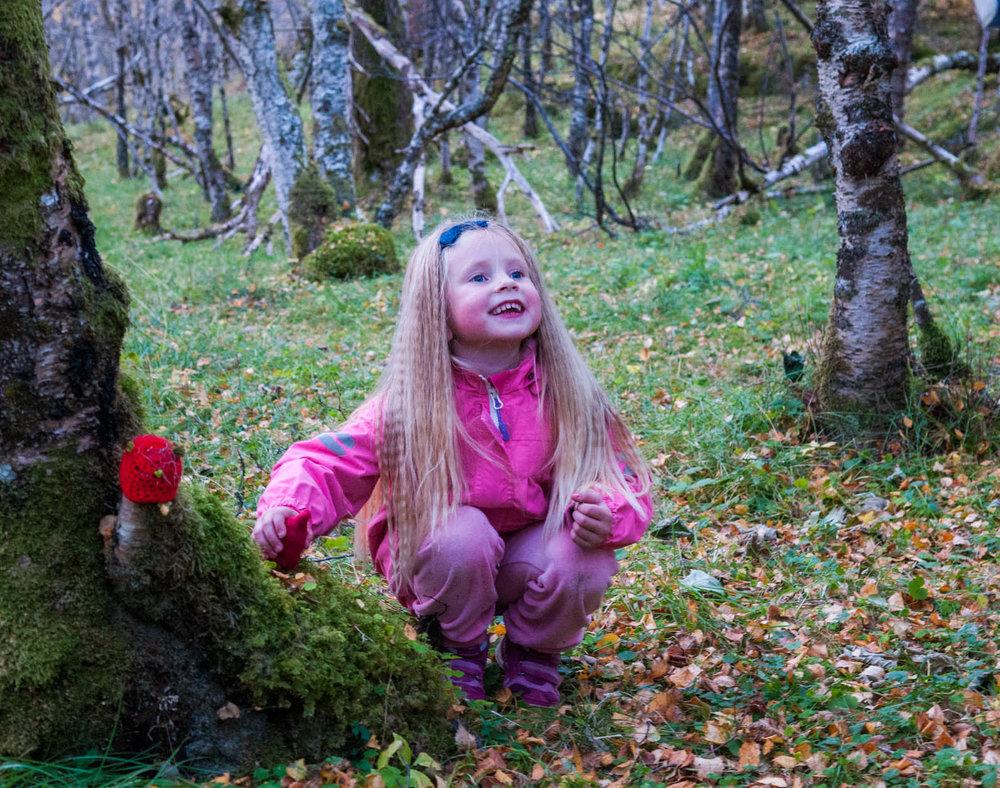 Fin og spennende skog for barn og voksne.