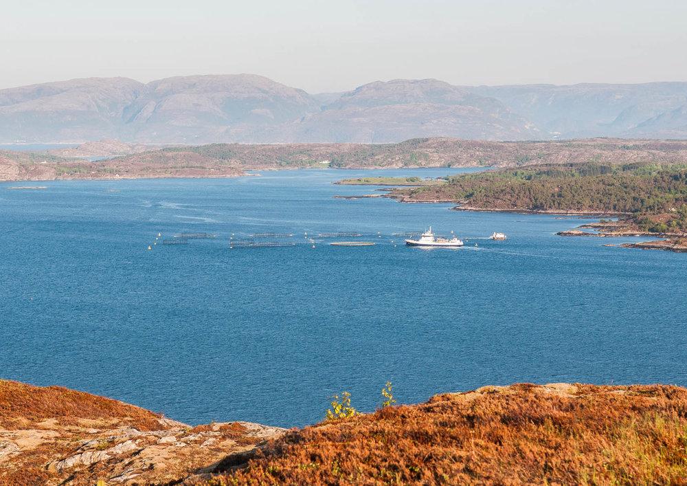 fra fjellværøya-5487.jpg