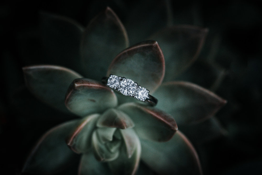 engagement-wedding-ring-photos.jpg