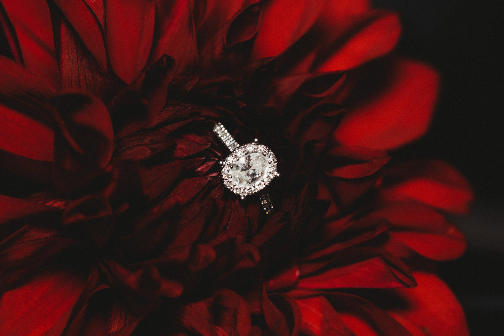 engagement-ring-photos.jpg