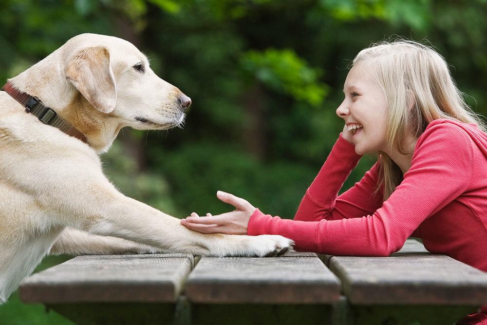 talking-to-pet.jpg