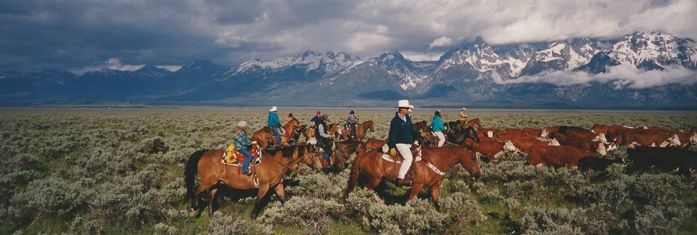 Nikki with her dad (robert gill)  on a cattle drive in grand teton National park