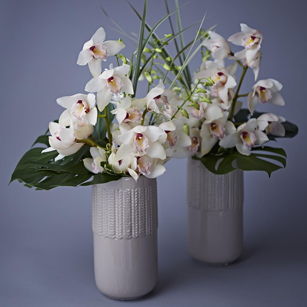 Cool Tropicals | Display arrangements featuring cymbidium &dendrobium orchids