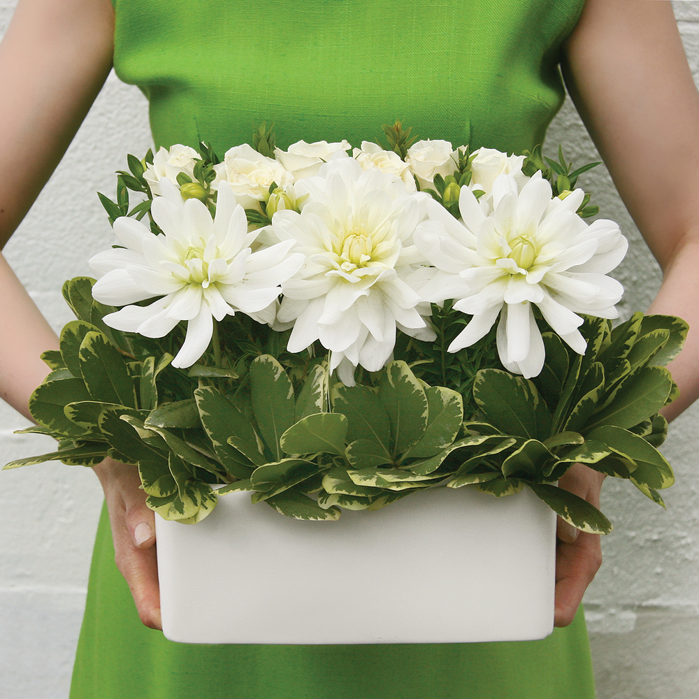 Modern Classic | Fresh white & green centrepiece | Photo: Natalia Dolan