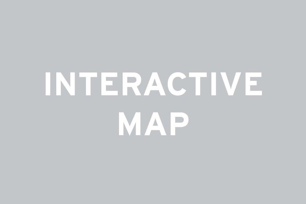 Interactive LIC Map