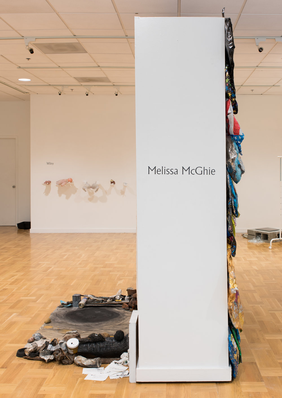 MelissaMcGhie-Littman-20.jpg