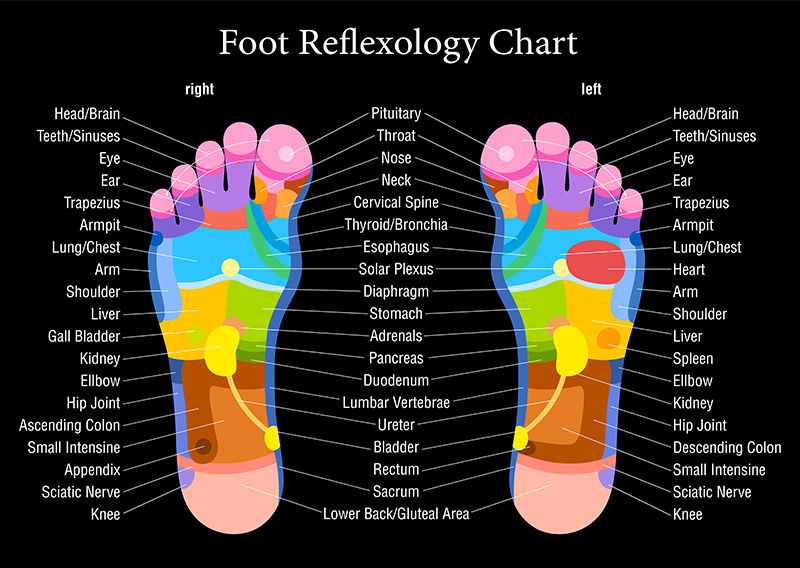 "This is amazing, right? The entire body is ""reflected"" on the feet!"""