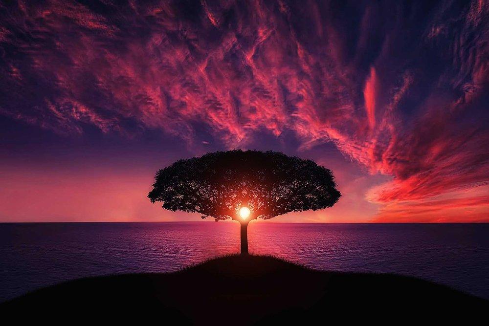 Renascimento - Através de um processo específico de respiração circular, também conhecida como Renascimento, podemos acessar espaços profundos de cura, equilíbrio psicossomático e consciência das emoções. Qualquer evento traumático na vida se reflete diretamente no corpo e na respiração. Em uma sessão de Renascimento, podemos acessar e dissolver problemas diretamente no nível bioenergético e sutil.