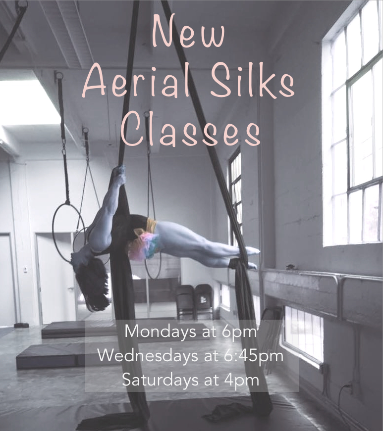 Aerial Silks - SM.jpg