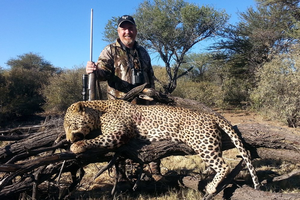 2015-6 Namibia - Leopard.jpg