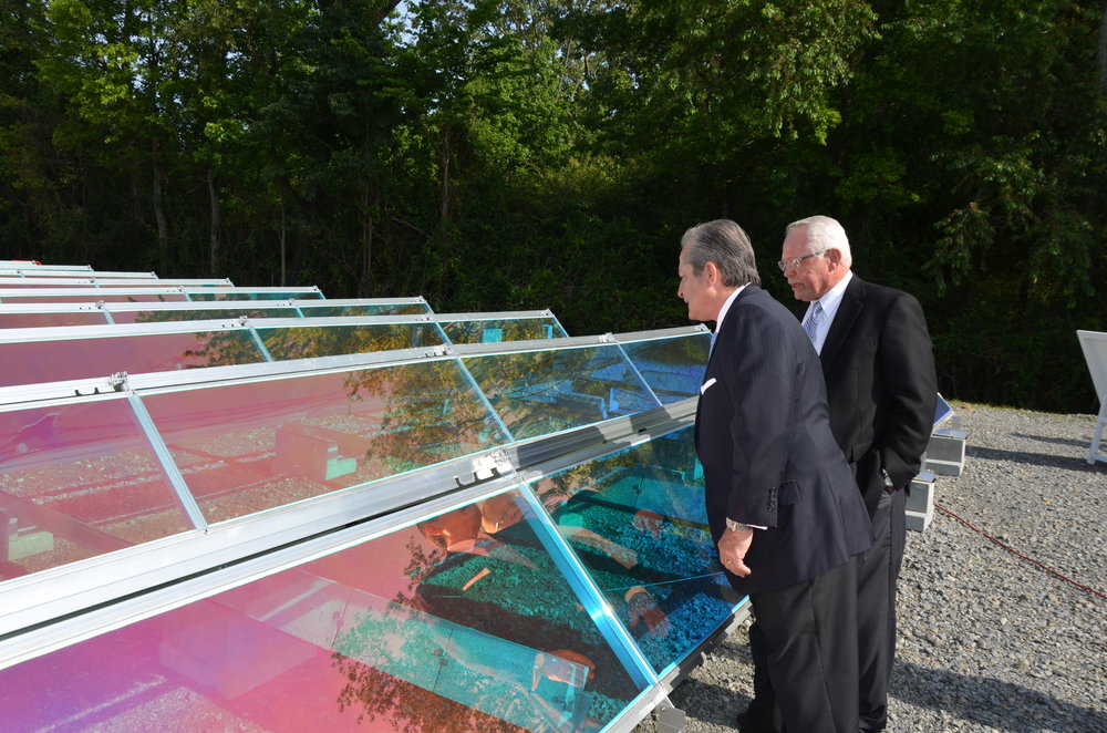 Members of the FECC Board at the 1 MW Solar Field