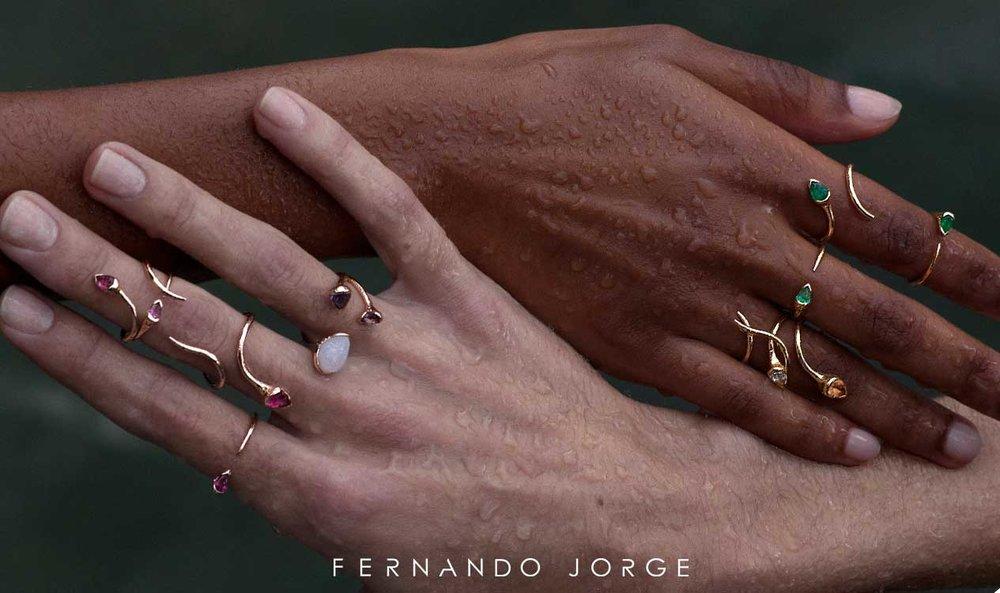Meridian-Jewelers---Designer---Fernando2.jpg