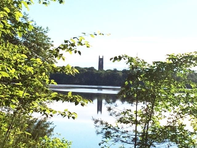 View of Tower Court across Lake Waban