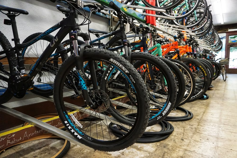What we carry - We feature bikes by: Giant, LIV, Momentum, Kona, Surly, All-City, and Salsa.We can special order bikes from: Waterford, Gunnar, Fairdale, Felt, Niner, Rocky Mountain, Soma, and Lauf.