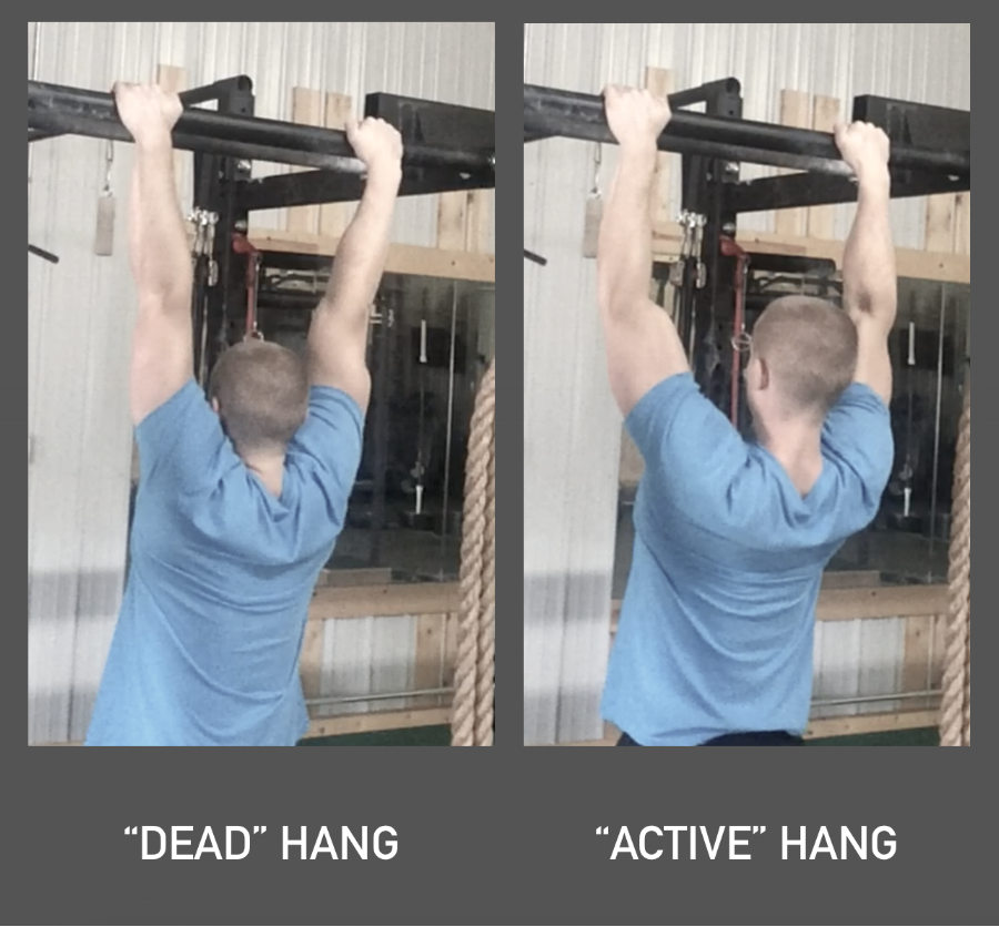"Dead hang: scapulae upwardly rotated, elevated, and slightly protracted. Active hang: scapulae already ""pinned"" into some downward rotation, depression, and retraction."
