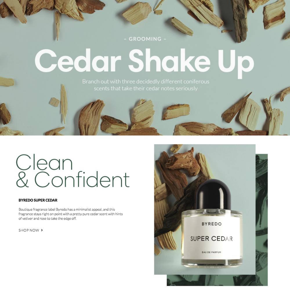 Cedar Shake Up | Holt Renfrew