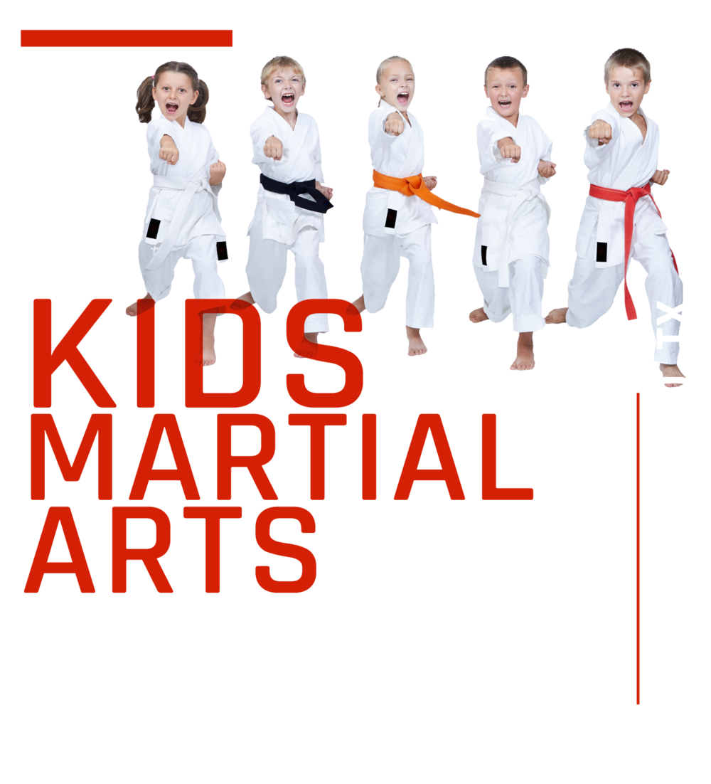 Kids Martial Arts in Mansfield Texas