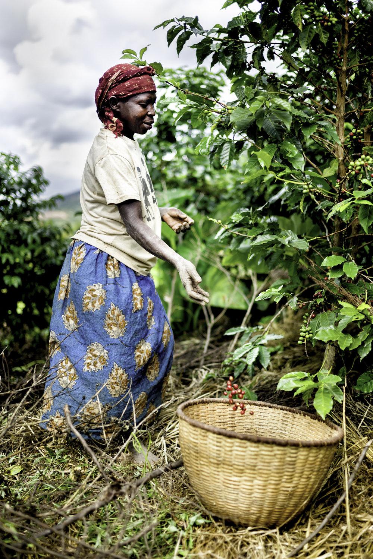 Alan Schaller Rwanda Web Res 5.jpg